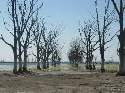 Paseo anegado por la laguna Epecuén, cerca de Buenos Aires (imagen procedente de taringa.net).