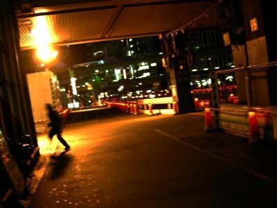 Una imagen de la noche de Tokio en agosto de 2008 que su autor ha titulado precisamente After Dark (procede de myspace.com/ruishimizu ).