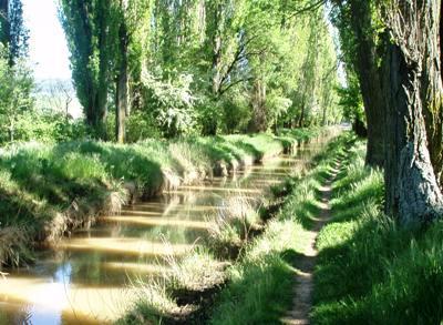 El Canal del Duero, en la zona de Valdechivillas (foto: MS)