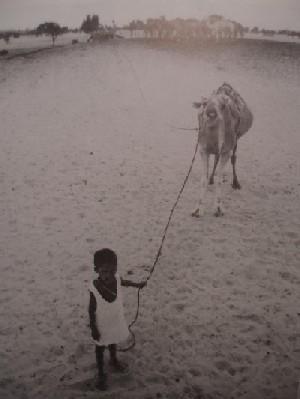 Niño-esclavo de Mauritania, cuidando los camellos (Foto: J.P. Laffont, procedente del libro de K. Bales)