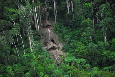 Chozas en mitad de la selva (imagen procedente de media.argentina.indymedia.org)