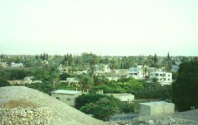 Vista de Jericó (imagen procedente de il-travel.com)
