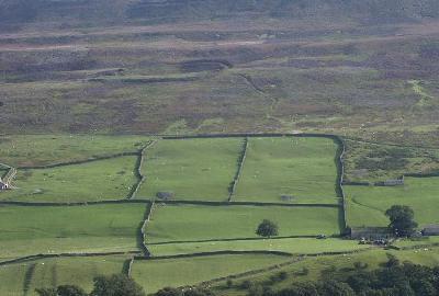 Tierras cercadas en las proximidades de Maiden Castle, Swaledale, Yorkshire, Inglaterra (imagen procedente de brigantesnation.com)