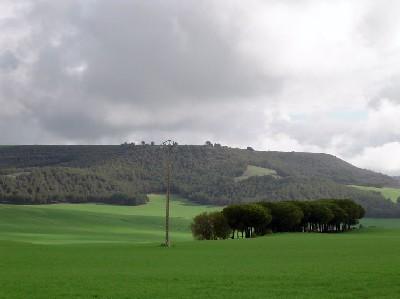 El campo de Valladolid, cerca de Renedo (imagen de Valle de Olid, en skyscrapercity.com)