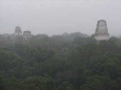 Vista de las torres de Tikal, entre la niebla y la espesura de la selva guatemalteca (imagen procedente de travelblog.org).