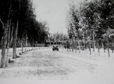 Vieja fotografía del Parque Ruiz Hidalgo de Murcia (imagen procedente de todocoleccion.net)