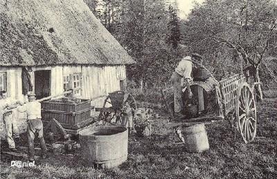 Fabricando sidra en Normandía, hacia 1900. Imagen de rouen.blog