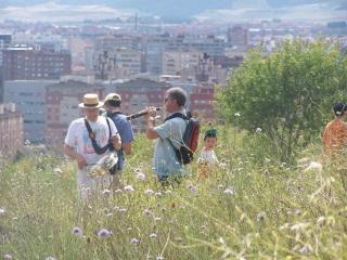 Imagen del paseo por el Cerro de las Contiendas del 4 de julio de 2007, organizado por Ecologistas en Acción de Valladolid (Imagen de su página web nodo50.org/ecologistas.valladolid)