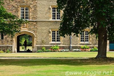 Flores en el encuentro del edificio y el suelo en un collage de Cambridge (imagen procedente de reggie.net)