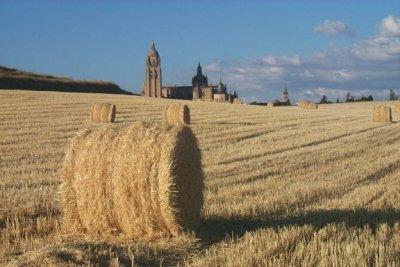 Segovia desde el sembrado (imagen procedente de lasnavillas.com)