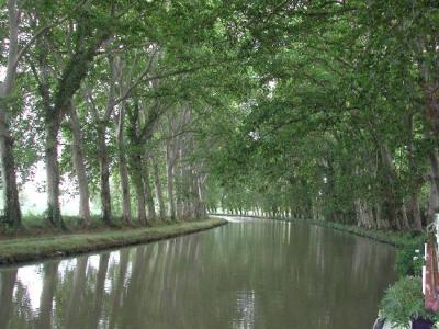 Una imagen del Canal du Midi (procedente de media-cdn.tripadvisor.com)